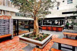 Royal Saxon - Best Bars Melbourne