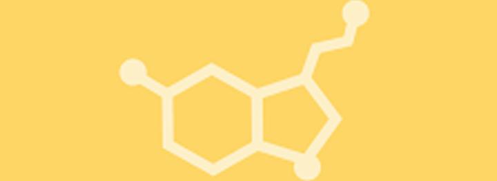 Serotonin Eatery </br>Plant Based Cafes