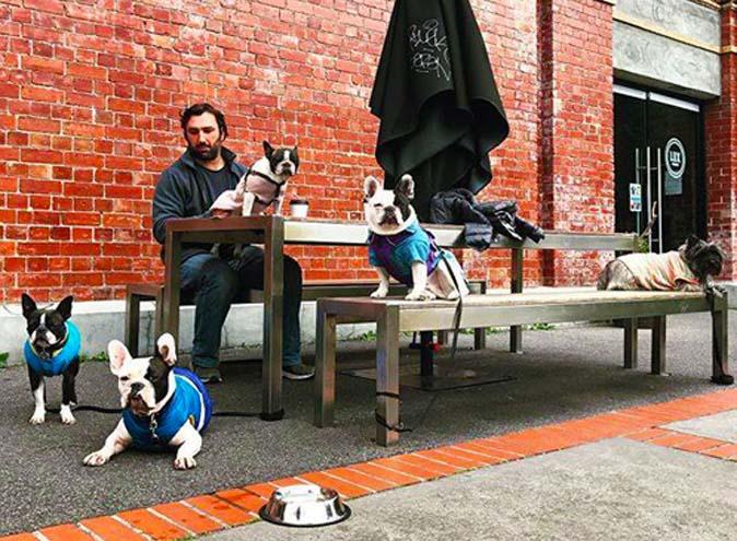 Lux Foundry Dog Friendly Cafes Brunswick Melbourne Terrace 4