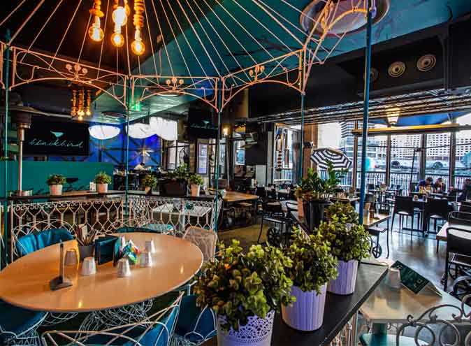 blackbird cafes bars restaraunts sydney harbour darlingharbour nightlife food drinks events functions cocktails021