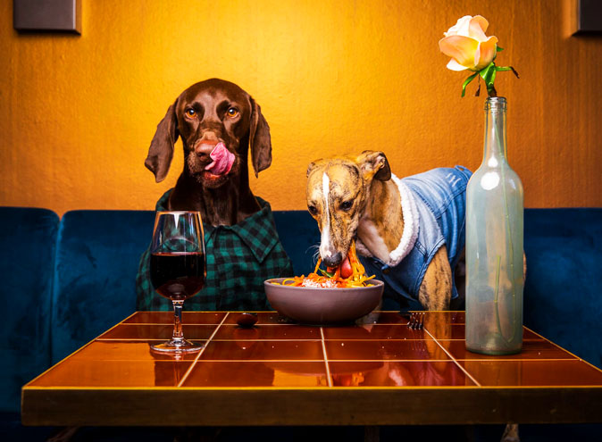 the national hotel richmond dating with dogs bars restaurants melbourne top bar