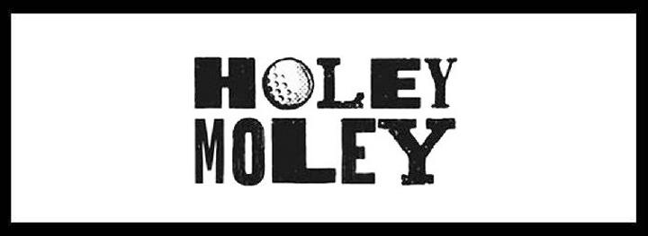Holey Moley <br/>CBD Minigolf Bar