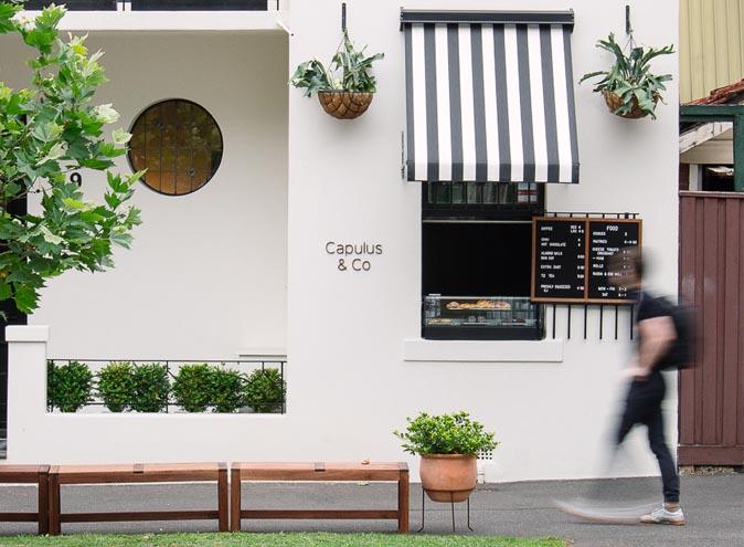 CapulusCo Cafe Brunswick Cafes Melbourne dining cafe coffee hidden cafe cute cafe3